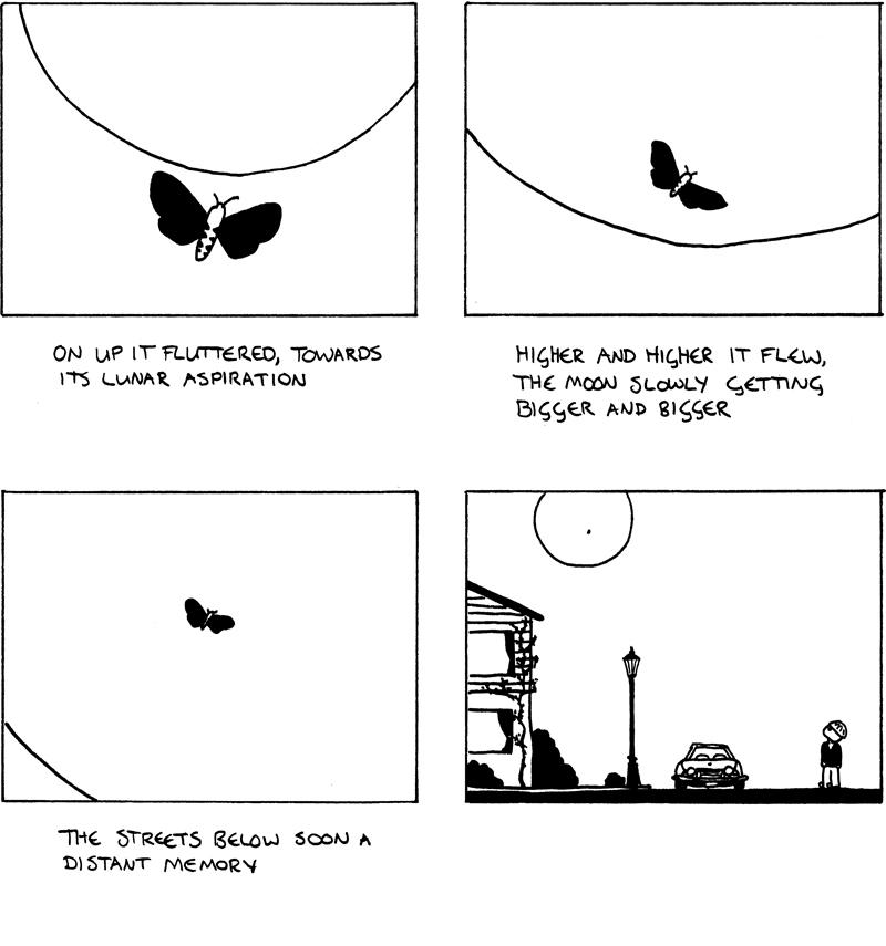Flitter Moth - Part 2